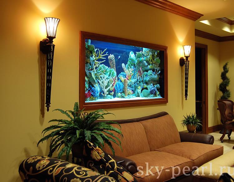 аквариум картина